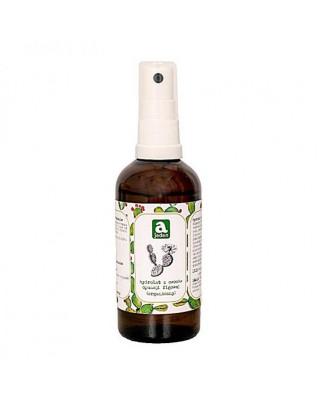 AJEDEN Hydrolat organiczny z owoców opuncji figowej