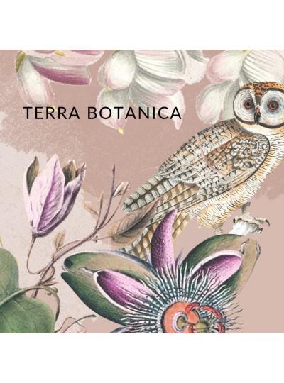 Terra Botanica BOX - październik 2019
